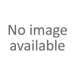LGR 100/GRD  Otočné kolo s šedou obručí a brzdou
